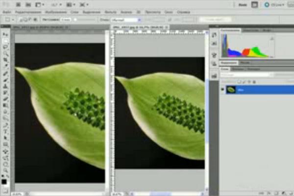 Интерфейс программы Фотошоп панель инструментов